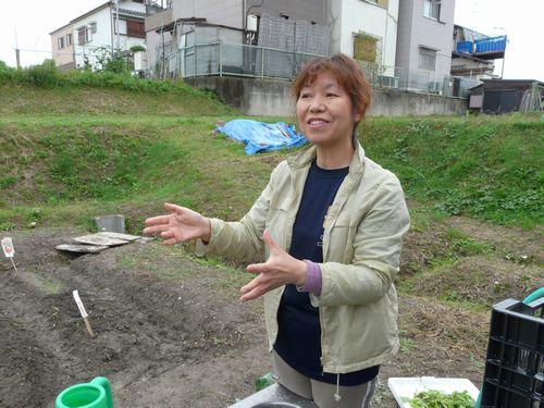 01_rakuhata_ishikawa01.jpg