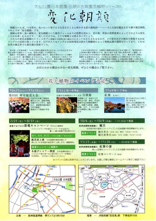 17_08_10_asagao02.jpg