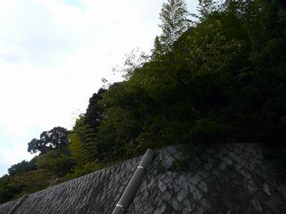 03_eboshi2.jpg