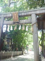 natuyasumi002.jpg