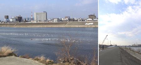 shichido1-2.jpg