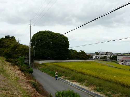 koyamake00_fuukei01.jpg